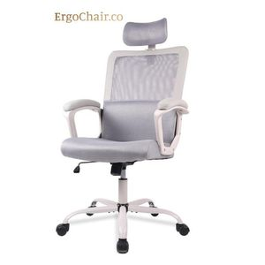 Brand New! Ergonomic Mesh Office Chair with Neck Support for Sale in Tempe, AZ
