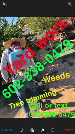 Yard/🌱🌴work🌴🌴🌳 for Sale in Tolleson, AZ