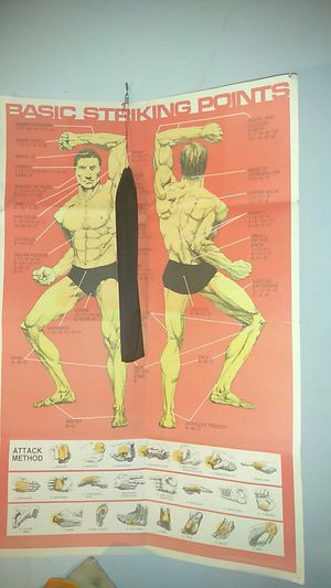Pressure Points poster Guide, like off karate Movie's... for Sale in Knoxville, TN