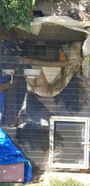 Very large exotic bird cage for Sale in Nipomo, CA
