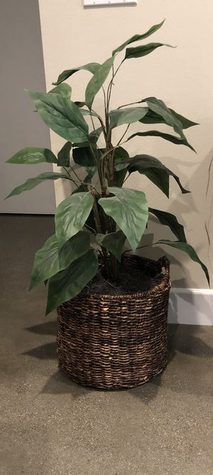 Fake Plant in Basket - BOHO for Sale in HUNTINGTN BCH, CA