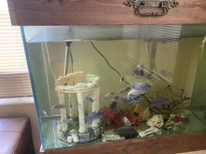 55 gallon fish tank for Sale in Lake Wales, FL