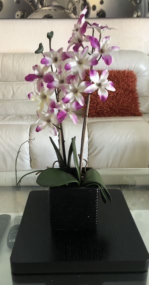 fake orchid plants for Sale in Hialeah, FL