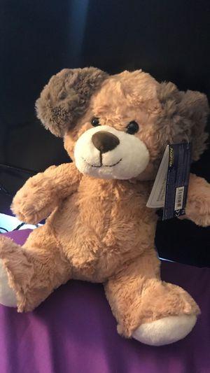 Bear for Sale in Meridian, MS