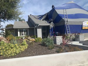 Tent Tent. Termite for Sale in Walnut, CA