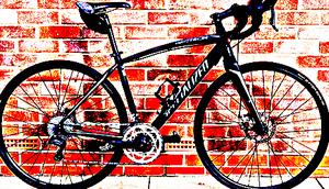 FREE bike sport for Sale in Petersburg, IL