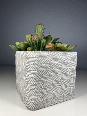 Fake cactus decorative accent plant for Sale in Denver, CO