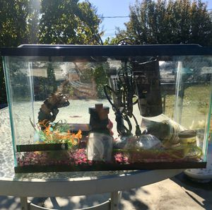 10 gallon fish tank with extras for Sale in Tacoma, WA