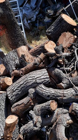 FREE AVOCADO WOOD for Sale in Los Angeles, CA