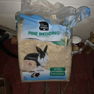 Free Pine Bedding for Sale in Tacoma, WA