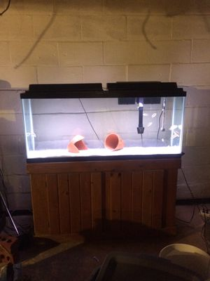 55 gallon aquarium for Sale in District Heights, MD