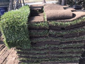 Fresh sod for Sale in Los Angeles, CA