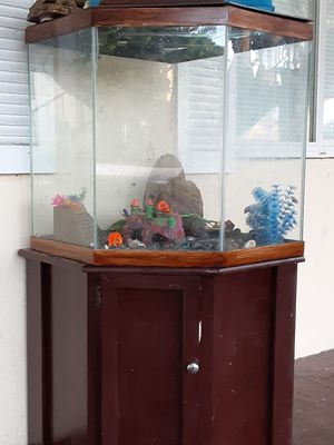 50-55 gallon aquarium with wood base cabinet and all the accessories are Included $150.00 for Sale in Deerfield Beach, FL