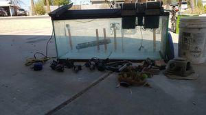 50 gal aquarium for Sale in Youngtown, AZ