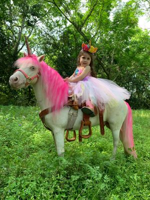 Pony rides and petting farm for Sale in Pasadena, TX