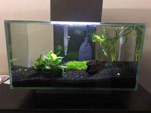 Planted fish tank aquarium $120 for Sale in Los Angeles, CA
