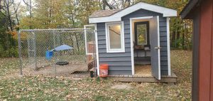 Chicken coop for Sale in Plano, IL