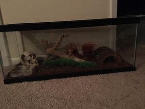 20 gallon tank. Never been used for Sale in Mount Carmel, TN