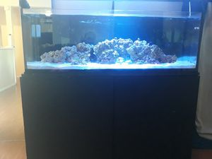 80 gallon reef tank for Sale in Paramount, CA