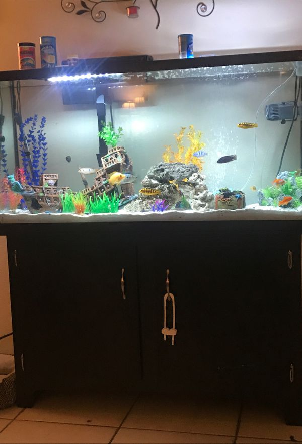 60 gal marine land tank and stand