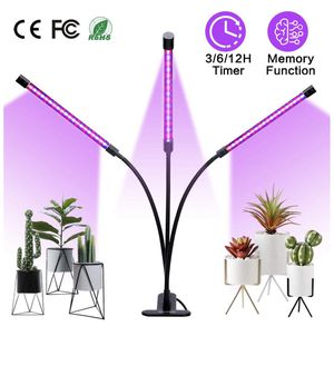 Plant light for Sale in Boston, MA
