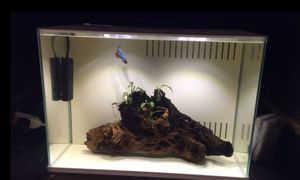 Aquarium fish tank with accessories for Sale in Fort Worth, TX