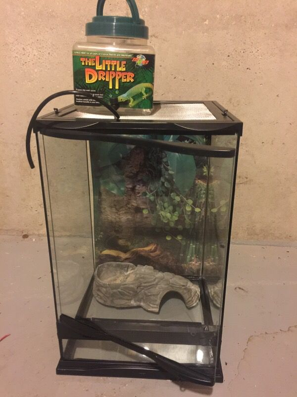 Exo Terra Dripper Plant Drip Watering System: Exo Terra Mini Tall Reptile Terrarium For Sale In Villa