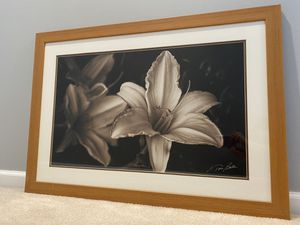 Beautiful Framed Wall Art for Sale in Gainesville, VA