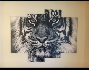 Tiger Canvas for Sale in Tulsa, OK