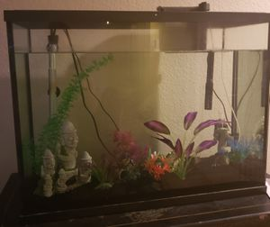 37 gallon fish tank for Sale in Peoria, AZ
