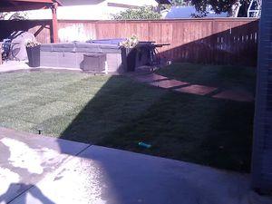 Grass for Sale in Buena Park, CA