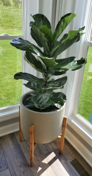 Ceramic Planter with Bamboo Stand for Sale in Long Beach, CA