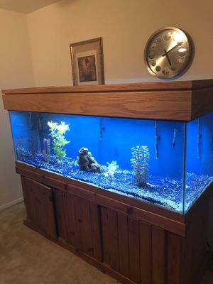 180 gallon fish tank for Sale in Pikesville, MD