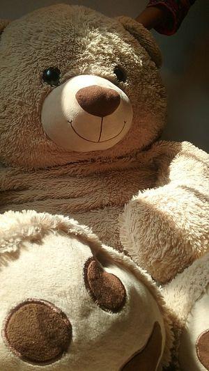 A life size teddy bear!!!! for Sale in Saint Joseph, MO