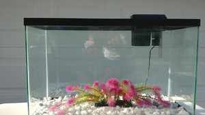 30 Gallon Aquarium with Marble Rock Gravel, Decorations, and a Tetra Whisper 40 Filter for Sale in Brandon, FL
