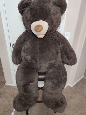 Big Teddy Bear for Sale in Chandler, AZ