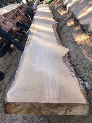 Cedar slabs for Sale in San Diego, CA