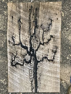 Lichtenberg wood burnings. for Sale in Luray, VA