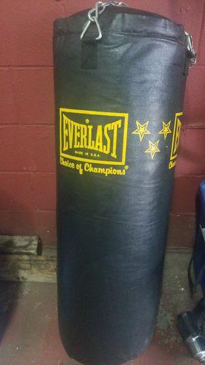 Everlast Punching Bag for Sale in Norfolk, VA