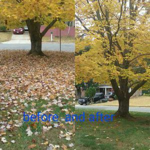 Leaf remove for Sale in Oxon Hill, MD