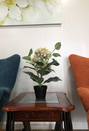 Fake plant for Sale in Garden Grove, CA
