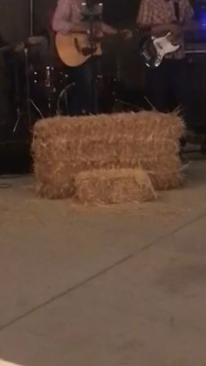 Hay Bales for Sale for Sale in Santa Ana, CA