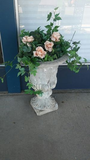 Cement Planters for Sale in Denver, CO