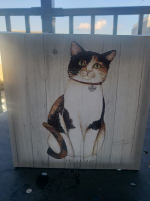 Cat canvas picture for Sale in Charlotte, NC