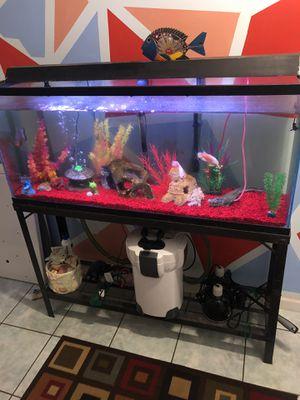 55 gallon aquarium stand/filter for Sale in Acworth, GA