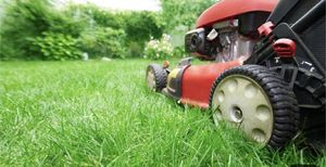 Lawn service for Sale in Fontana, CA
