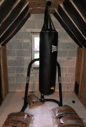 Everlast 100lb punching bag and stand for Sale in Cleveland, OH