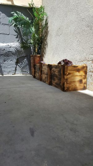 Plant base for Sale in Los Angeles, CA