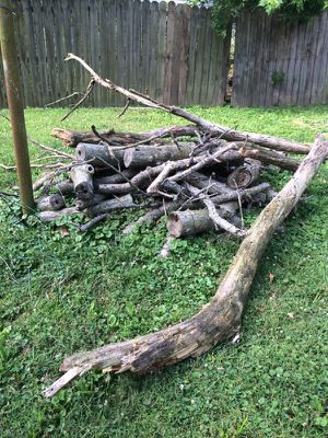 Free firewood for Sale in Evansville, IN