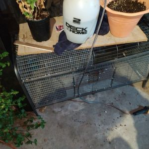 Bird Or Animal Cage for Sale in Rosemead, CA